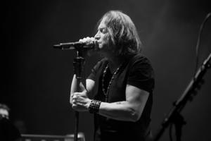 D BOERDERIJ, ZOETEMEER 2014